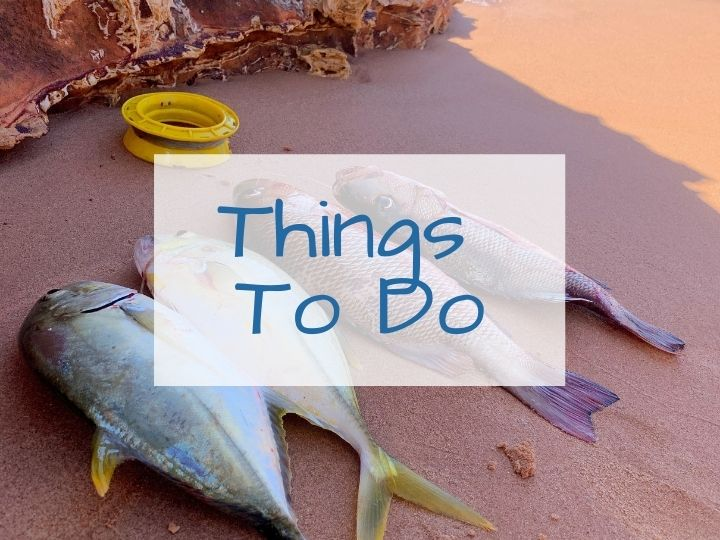 Things to Do on the Dampier Peninsula